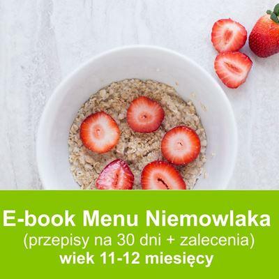 E-book dieta niemowląt  w wieku 11-12 miesięcy przepisy dla dzieci