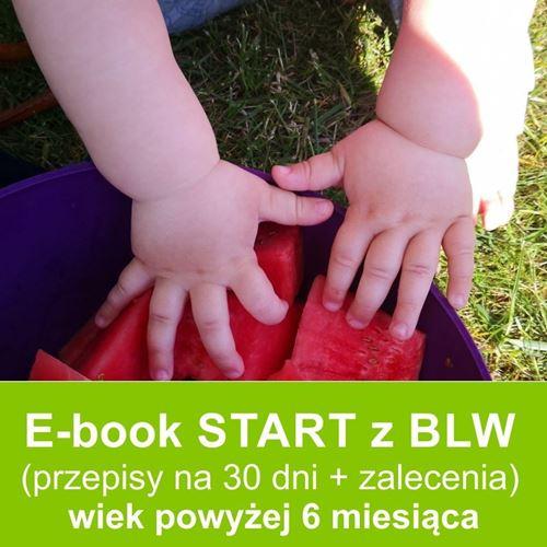 E-book start z blw przepisy dla dzieci.pl ebook z przepisami dla niemowląt